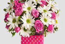izmire çiçek siparişleriniz için çiçek galerisi / izmir çiçek galerisi online siparişlerinizi merkez ve ilçelerde bayilerimiz ile aynı gün teslim ediyor.kredi kartı veya havale ile sipariş verebilirsiniz.