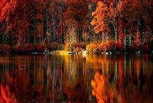 . autumn .