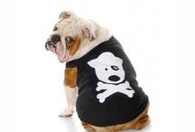I love doggies / by Tiffany Decker Sapyta