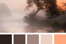 Bilde og farger