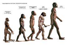 Evolución del ser humano / Este trabajo trata sobre la evolución del ser humano desde sus orígenes hasta el actual. Trabajo realizado por Adriana Mendoza Ramírez, Salud María Ruiz Sánchez, Mº Ángeles Ponferrada García