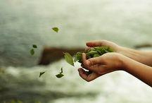Donne ecologiche