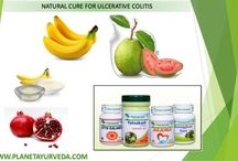Ayurvedic Treatment For Ulcerative Colitis / Ayurvedic treatment for ulcerative colitis include various special herbs that reduces the symptoms like bloody diarrhea, pain, abdominal cramps, etc and heals the colitis naturally