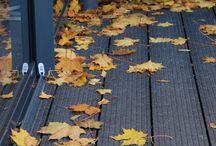 Ajankohtaista- fall- syksy