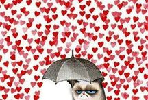 Grumpy / by Elisabeth Kitzing