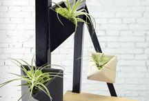 Magnetized Envelope Planters / Unique ceramic planters with live air plants.