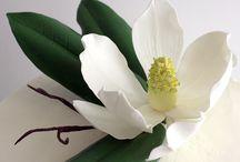 Sugar Flowers / Sugarpaste and gumpaste flowers