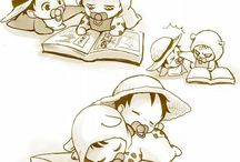 law et luffy