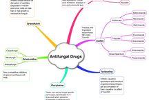 Anti-fungal drugs