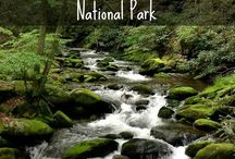Great Smoky Mountains National Park / https://www.goldenbustours.com/