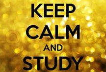 study & law