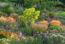 German concept of mixed planting