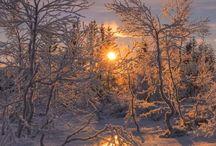 De iarnă