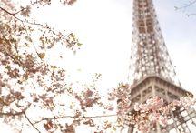 Paris - www.syrenialifestyle