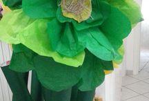 fiori giganti - fagiolino