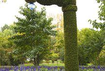 정원 및 식물