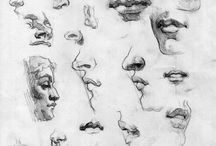 Noses Sketches / Sketches of nose in pencil