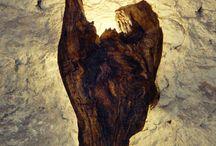 Sea wood