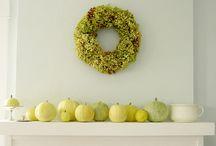 Fall / by Amie Raines