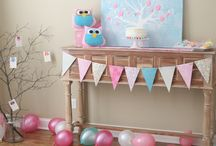 Hannah's 1st Birthday Party / by Sharon Van Wyk