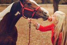 horses (◍•ᴗ•◍)❤