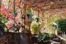 deco exterior / Decoracion de exteriores, jardines y quinchos. Aire Libre
