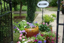 Flowers / Gardens / Yards / by Diane Willis