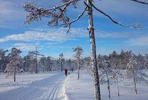 Vinter  på Hurumlandet