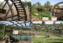 """UN PAISAJE BIBLICO EN ISRAEL / Neot Kedumim , es la reserva del paisaje bíblico en Israel, Trata de crear la configuración física de la biblia judía y comprende una serie de paisajes naturales y agrícolas. Es una reserva natural ubicada en Ben Shemen Bosque y cerca de la ciudad """"Modi'ín"""" en la Ruta 443 ,entre Jerusalén y Tel Aviv , Israel."""