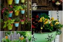 Garden / by Tiffany Siefker