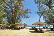 Beaches of Thailand / De mooiste stranden van Thailand: Phi Phi Eilanden, Koh Tao, Phuket, Koh Samui, Railay Beach en nog veel meer!  Ontdek ze allemaal met Original Asia!