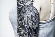 Owl # Coruja