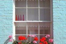 Flowers & Flower boxes / by Jane Bishop