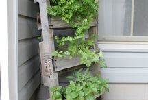 support plante avec palettes