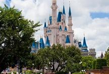 Disney World / by Lady Dianne's Custom Window & Bed Treatments