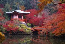Fall's destinations / Autumn is a beautiful time of year when every leaf is like a flower in itself, transforming the earth into one big garden. Travel with us through this season!