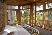 House bamboo
