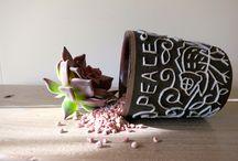 2014.6月 / 陶芸家 志村観行さんの陶の作品と不思議植物のコラボ展