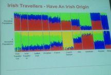 Irish Traveller DNA / Irish Traveler DNA