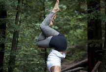 Yoga / by Dawn Scheipner