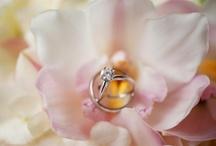Bride   Wedding Rings