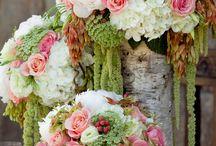 wedding a&g