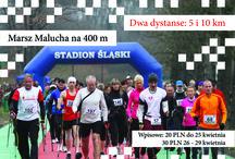 """IV Ogólnopolski Marsz Nordic Walking """"Chodzić każdy może"""" 29.04.2017 Stadion Śląski"""