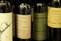Vini, Wines