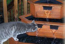 Cat enclosure  / Ideas for our cat enclosure