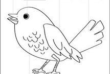 ocell