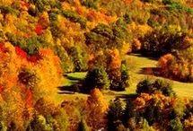 USA-Massachusetts