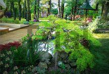 landscape  design  by Seralungo Landscape / Landscape design Outdoor decoration Garden Restoration Fountains