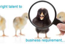 Executive Search and Recruitment - Consultant - Zimbio