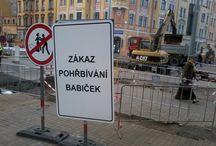 Z domova / Z českých luhů a hájů